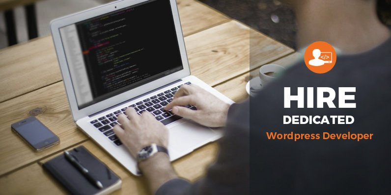 wordpress-development2